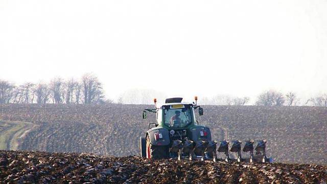 Anul 2018, favorabil pentru agricultură