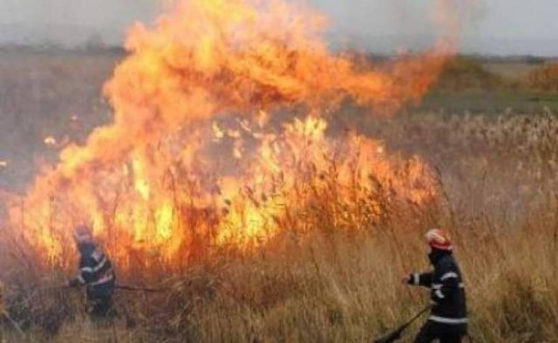 Peste 70 de hectare de vegetație arsă au fost stinse de pompieri în ultimele 24 de ore