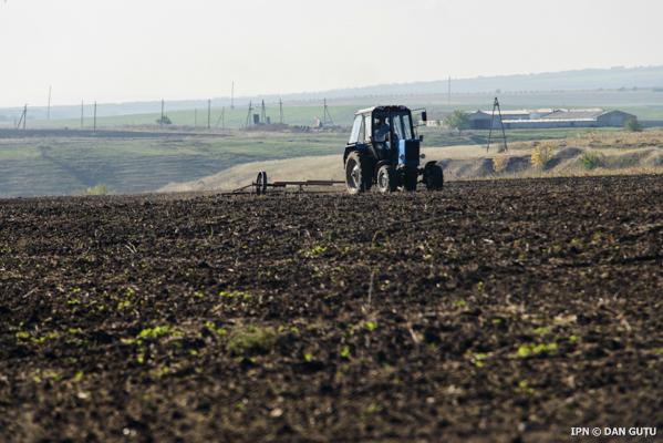 Proprietarii de terenuri agricole amplasate după traseul Râbnița-Tiraspol vor beneficia de plăți din partea statului