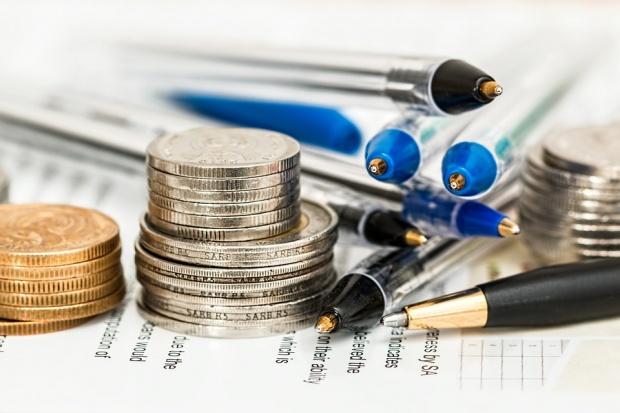 Ion Butmalai: Întreprinderile de stat au  o importanţă majoră pentru economia ţării