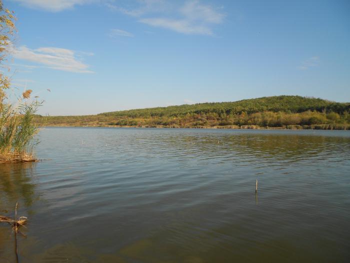 Medicii igieniști: Scăldatul în lacurile din Bălți este periculos