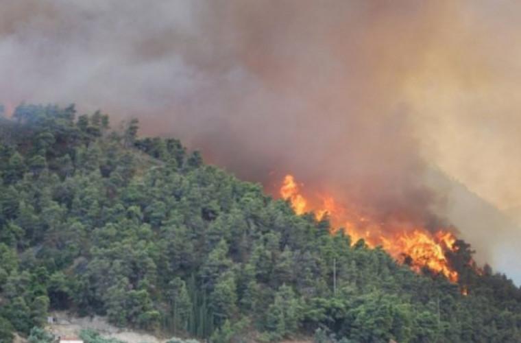Incendiile revin în Grecia