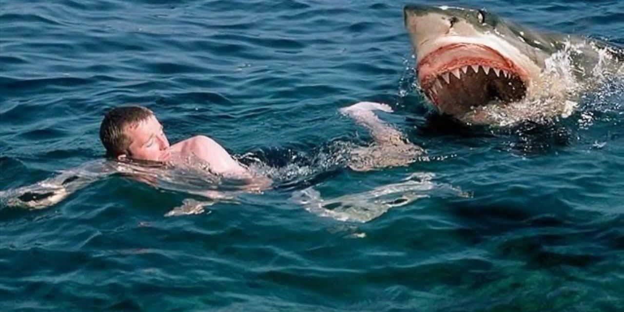 VIDEO// Un bărbat se bate cu cuțitul cu un rechin în ocean