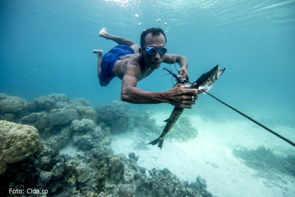Cum pescarii Bajau rezistă sub apă 13 minute fără să respire