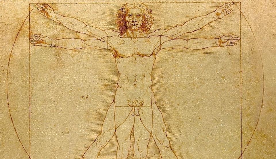 Organe fără de care corpul uman nu poate supravieţui
