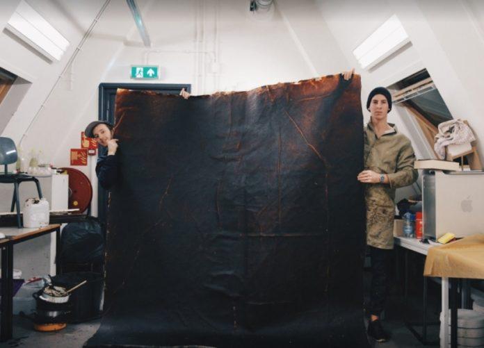Doi tineri produc haine şi mobilă din fructe stricate