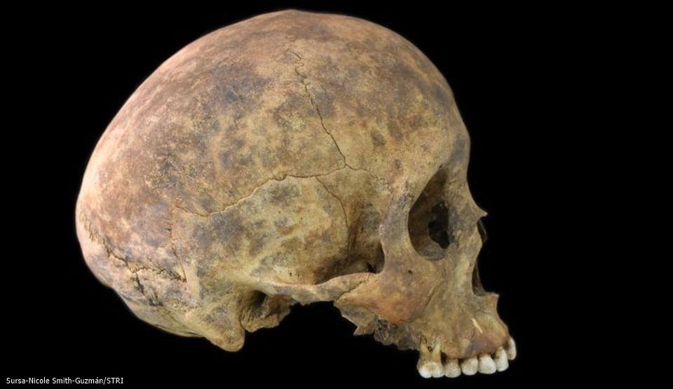 """Arheologii au descoperit noi informaţii privind cimitirul """"ororilor"""" din Panama"""