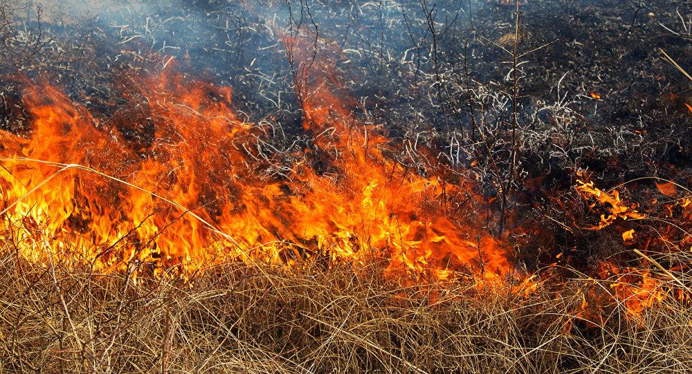 Incendiu lângă un supermarket din Bălți