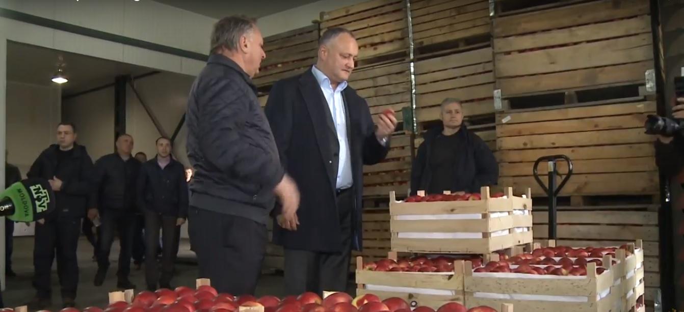 Anatol Moraru  // Rusia a început tare campania electorală
