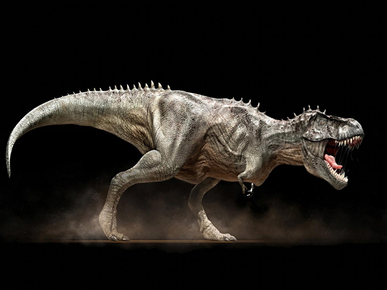 Un dinozaur mai mare decât T. rex a fost descoperit în Italia