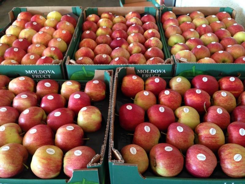 Rusia a interzis un lot de 20 de tone de mere moldovenești