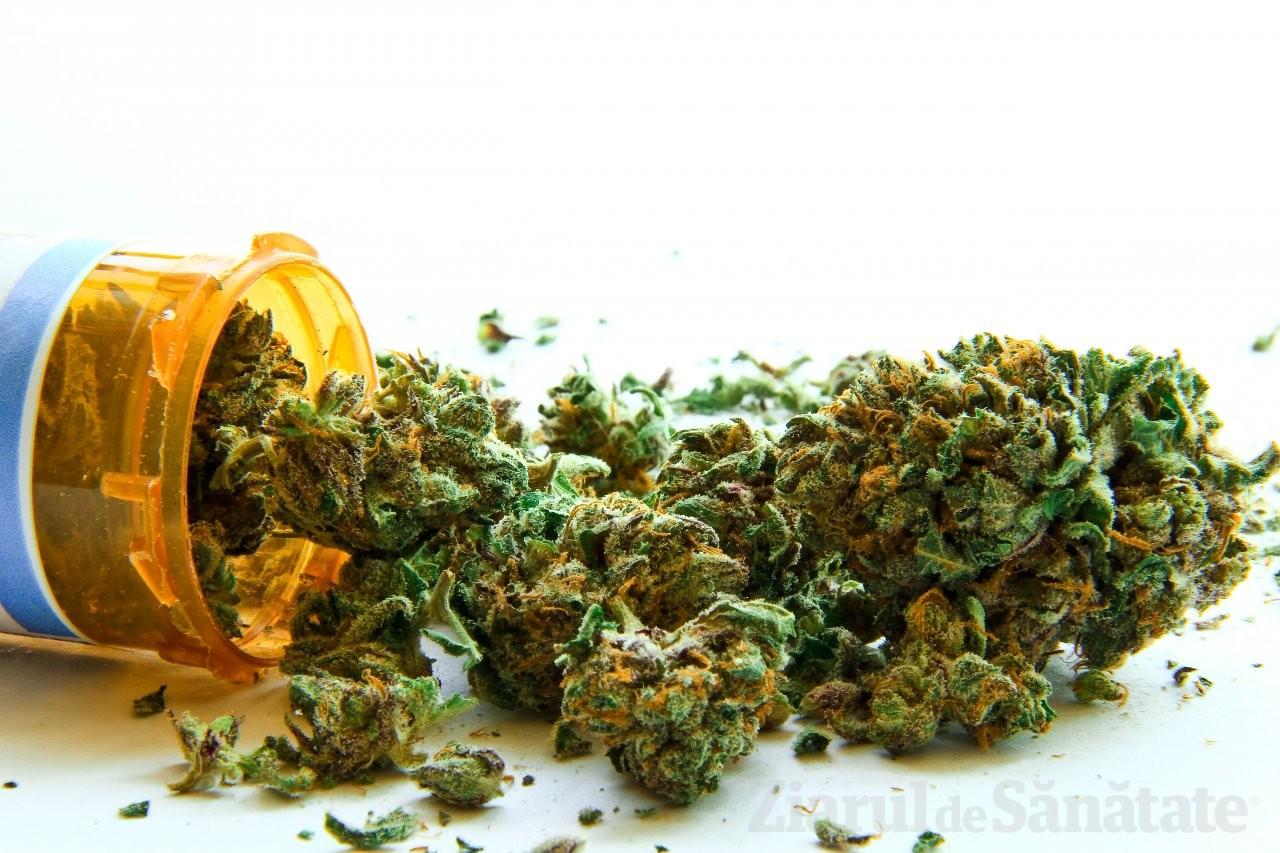 Prima ţară din Asia care LEGALIZEAZĂ canabisul în scop terapeutic. În ce condiţii se cultivă marijuana