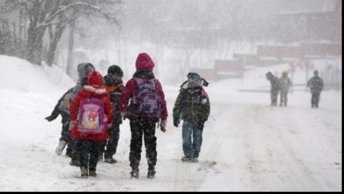 VIDEO | Decizia Guvernului: Toate școlile și grădinițele din republică vor fi închise pe 25 ianuarie