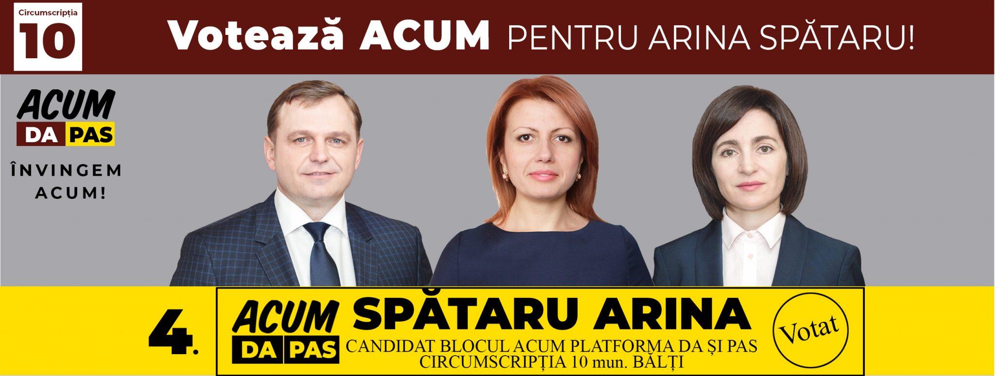 Banner Arina Spataru