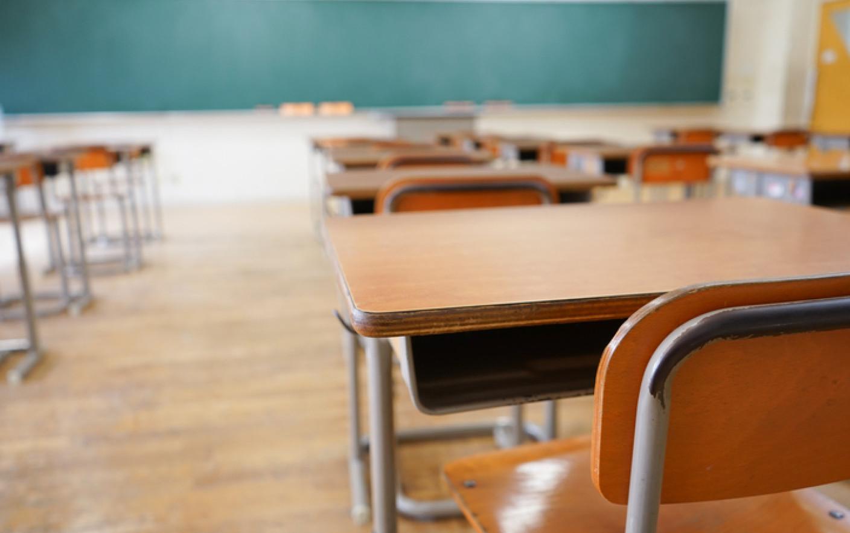 """Monica Babuc – da, Direcția Generală de Învățământ Fălești – ba. Trei școli din raionul Fălești urmează să fie """"lichidate"""""""