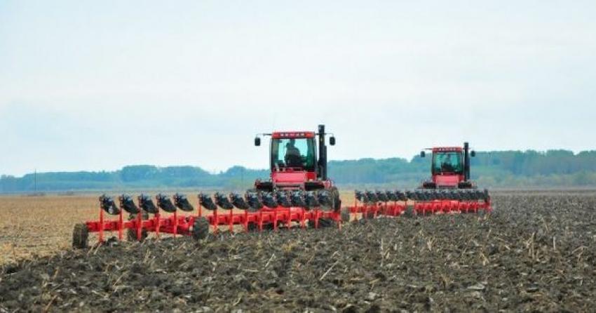 MADRM: Frigul din ultimele zile nu a avut impact asupra sectorului agrar