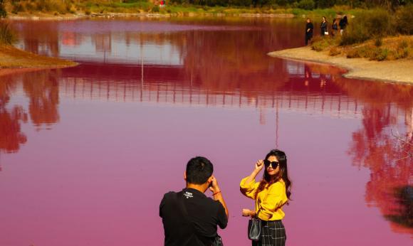 lac-roz