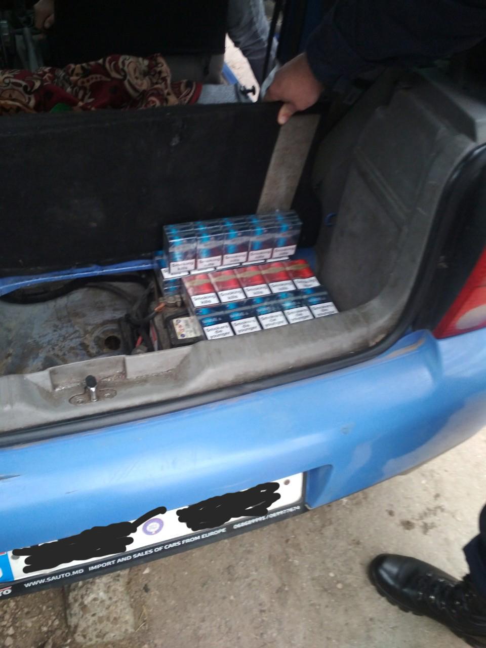 FOTO | Polițiștii de frontieră au descins la patru adrese din orașul Lipcani