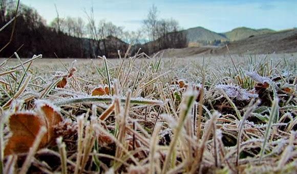 Cod galben de înghețuri pentru jumătate din teritoriul Republicii Moldova! Ce localități sunt vizate