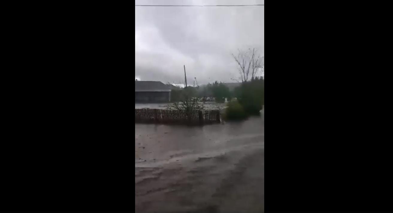 VIDEO | Ploile cu grindină au afectat terenurile agricole din Pociumbeni, Rîșcani