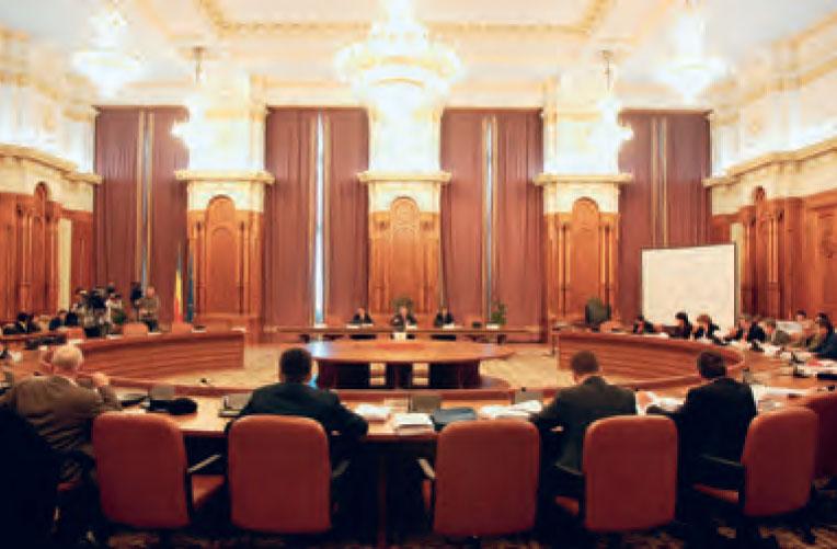 Cine vor conduce noile comisii parlamentare