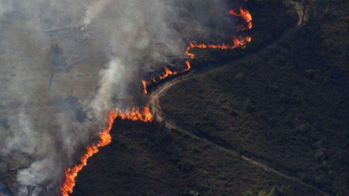 Peste 700 de pompieri portughezi luptă contra incendiilor de pădure în centrul ţării