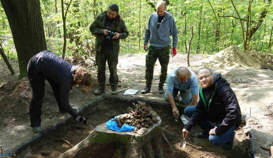 Descoperire istorică macabră în Polonia