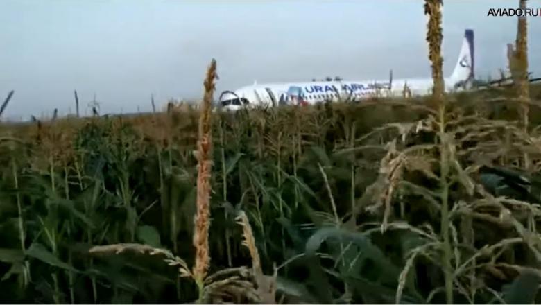 Un avion de pasageri a aterizat forțat pe un câmp lângă un aeroport din Moscova