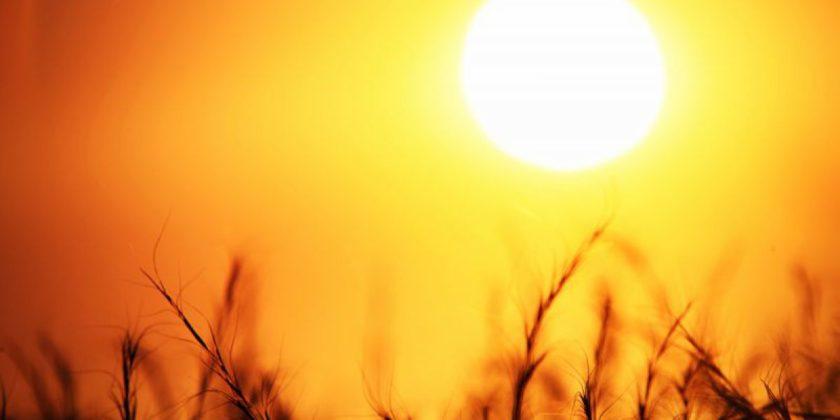 Până la începutul lunii septembrie, în ţară sunt valabile Coduri Galbene de caniculă, secetă şi pericol de incendiu