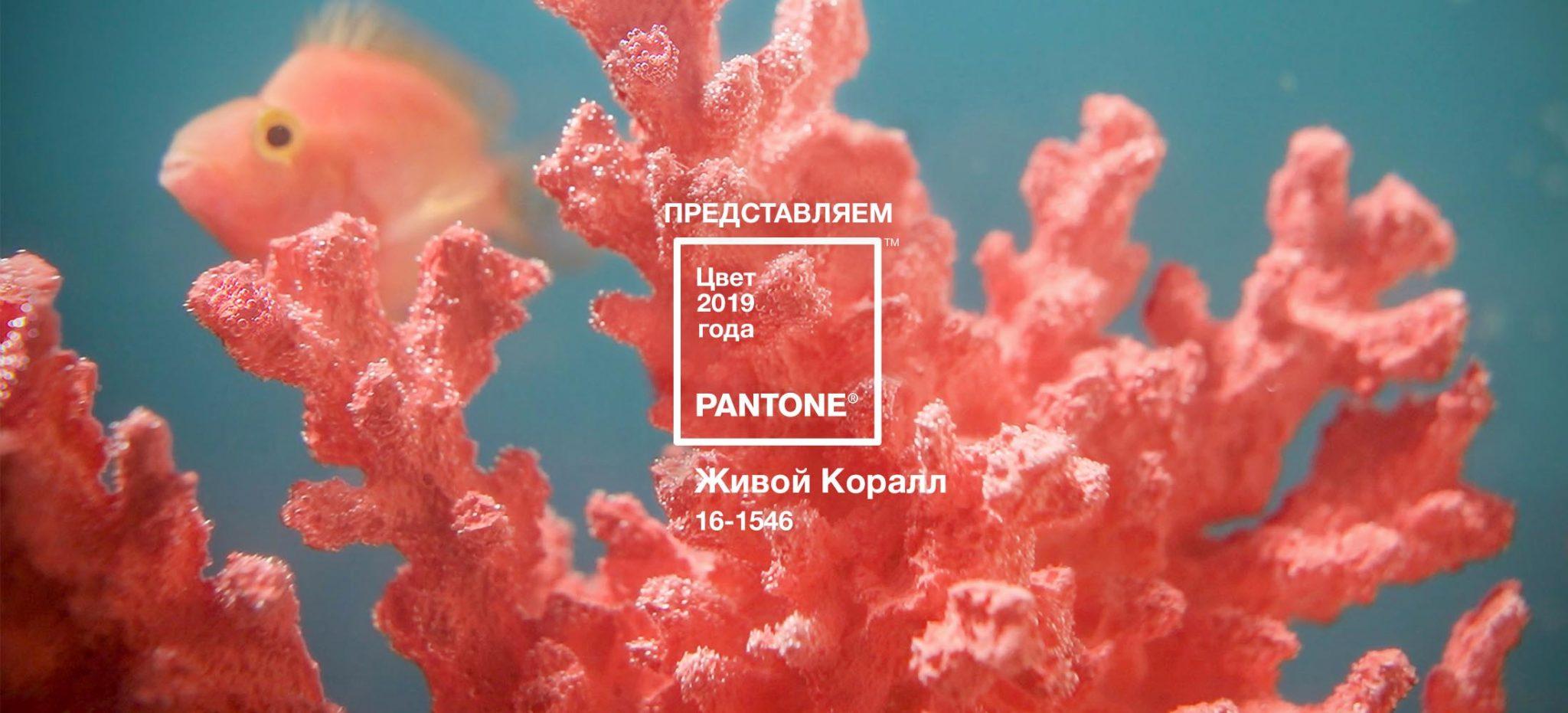 Жизнеутверждающий коралловый- главный цвет индустрии моды и дизайна 2019 года