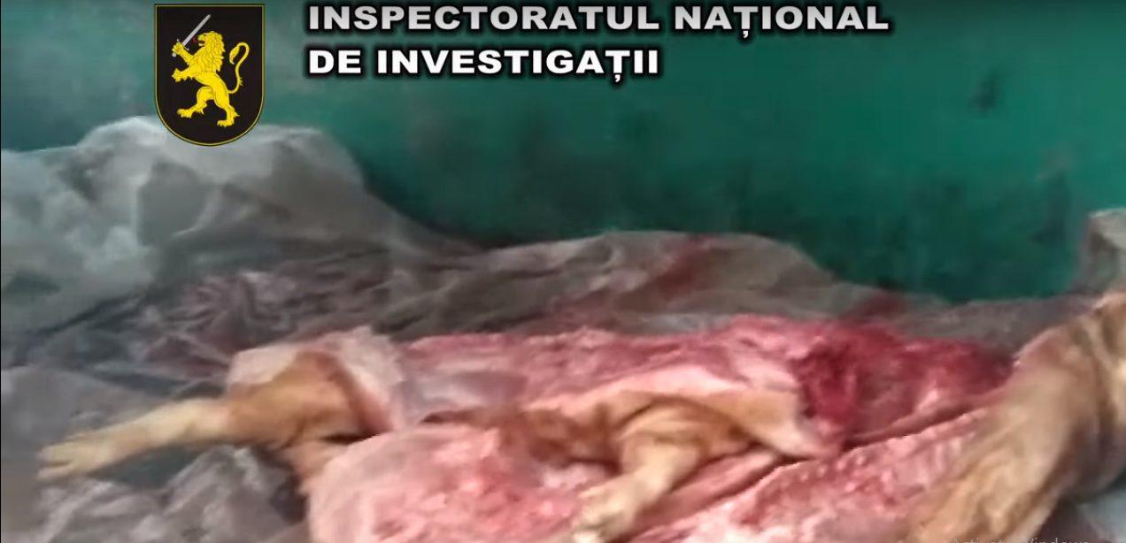 Полиция конфисковала тонну мяса, перевозимую в антисанитарных условиях
