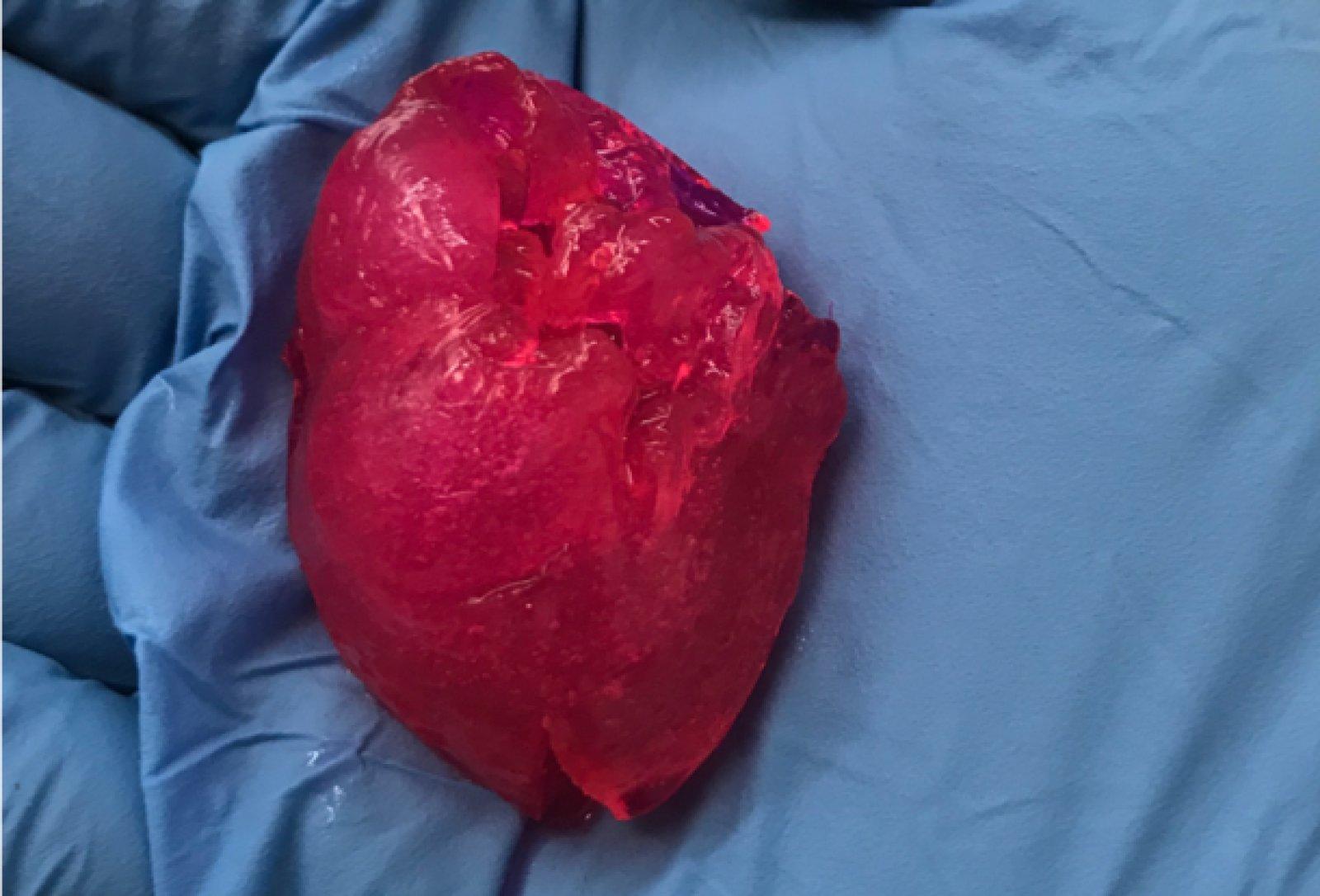 Американские учёные напечатали человеческое сердце на 3D-принтере