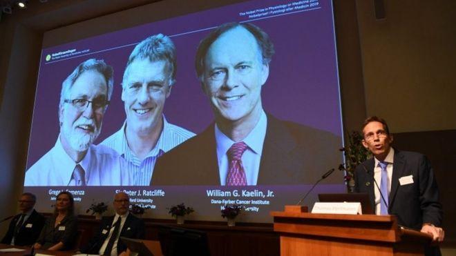 Нобелевская премия по медицине вручена за открытие, помогающее в борьбе с раком