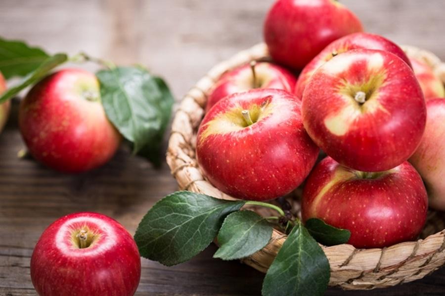 (Бес)полезные советы //  Какие фрукты помогут укрепить иммунную систему осенью