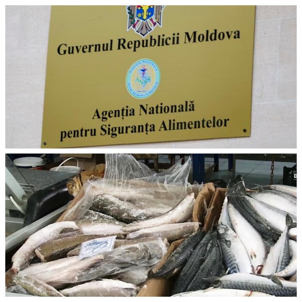 Anatol Moraru // Peștele infestat – o hârtie de turnesol a situației la zi