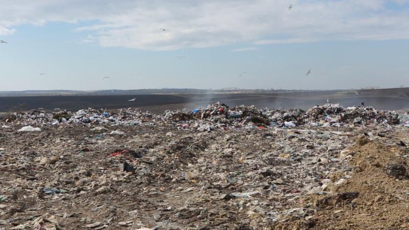 VIDEO | Blestemul gunoiului la Bălți. Primăria vrea implicarea Guvernului