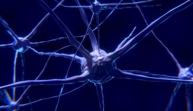 10 descoperiri impresionante despre creier care au fost făcute în 2019
