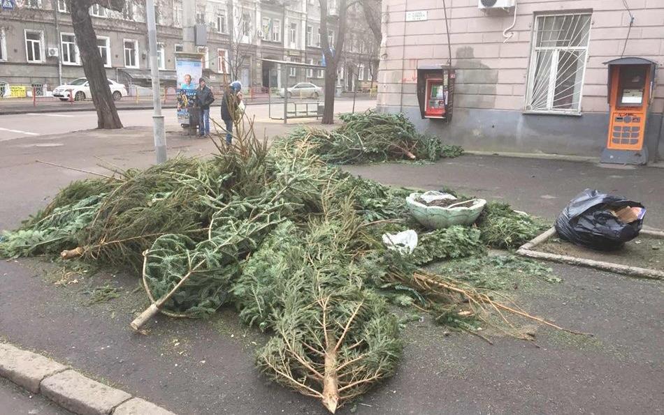 ФОТО | Улицы Одессы завалены непроданными елками
