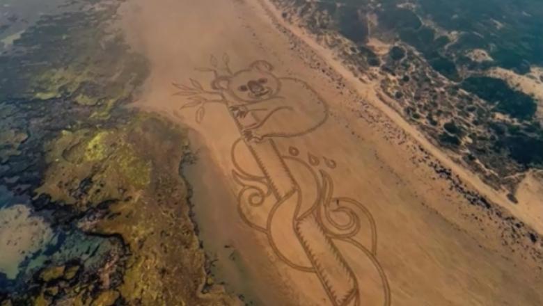 VIDEO | Un urs koala de 120 de metri, desenat pe o plajă din Australia drept răspuns la incendiile de vegetație
