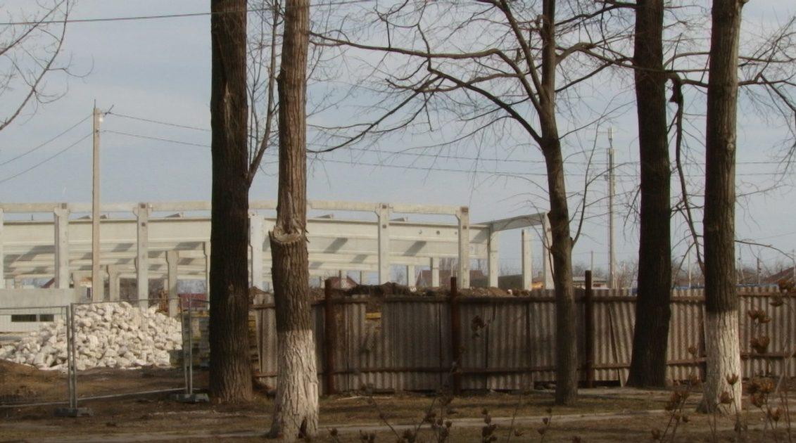 ВИДЕО   Бельцы получат от Kaufland почти 650 тысяч леев. Это компенсация за снос деревьев