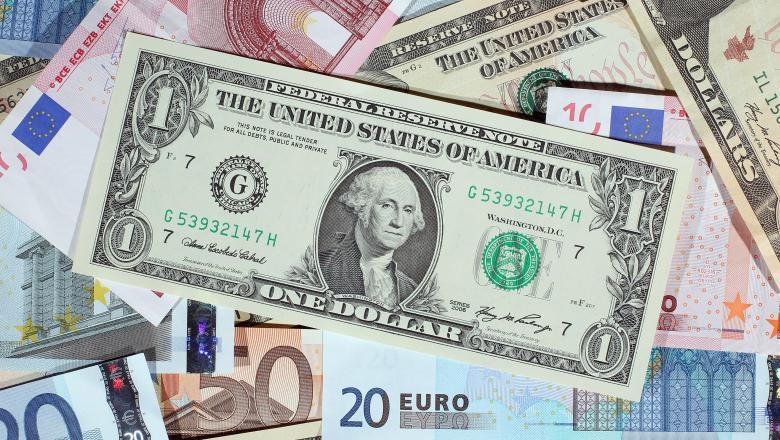 Teama de coronavirus duce la scăderea euro. Investitorii mizează pe dolari