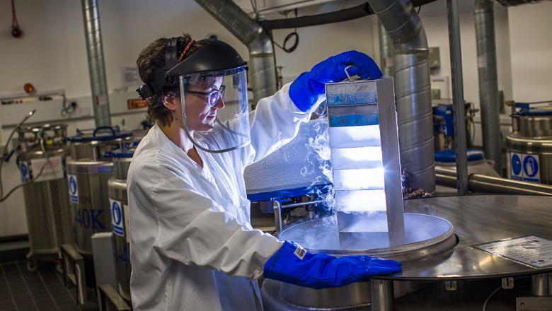 Cercetătorii americani au descoperit un tratament care ar putea vindeca boala Parkinson