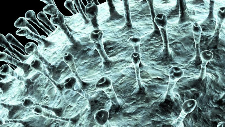 Epidemia de coronavirus intră într-o nouă fază: cazurile de îmbolnăvire cresc în afara Chinei