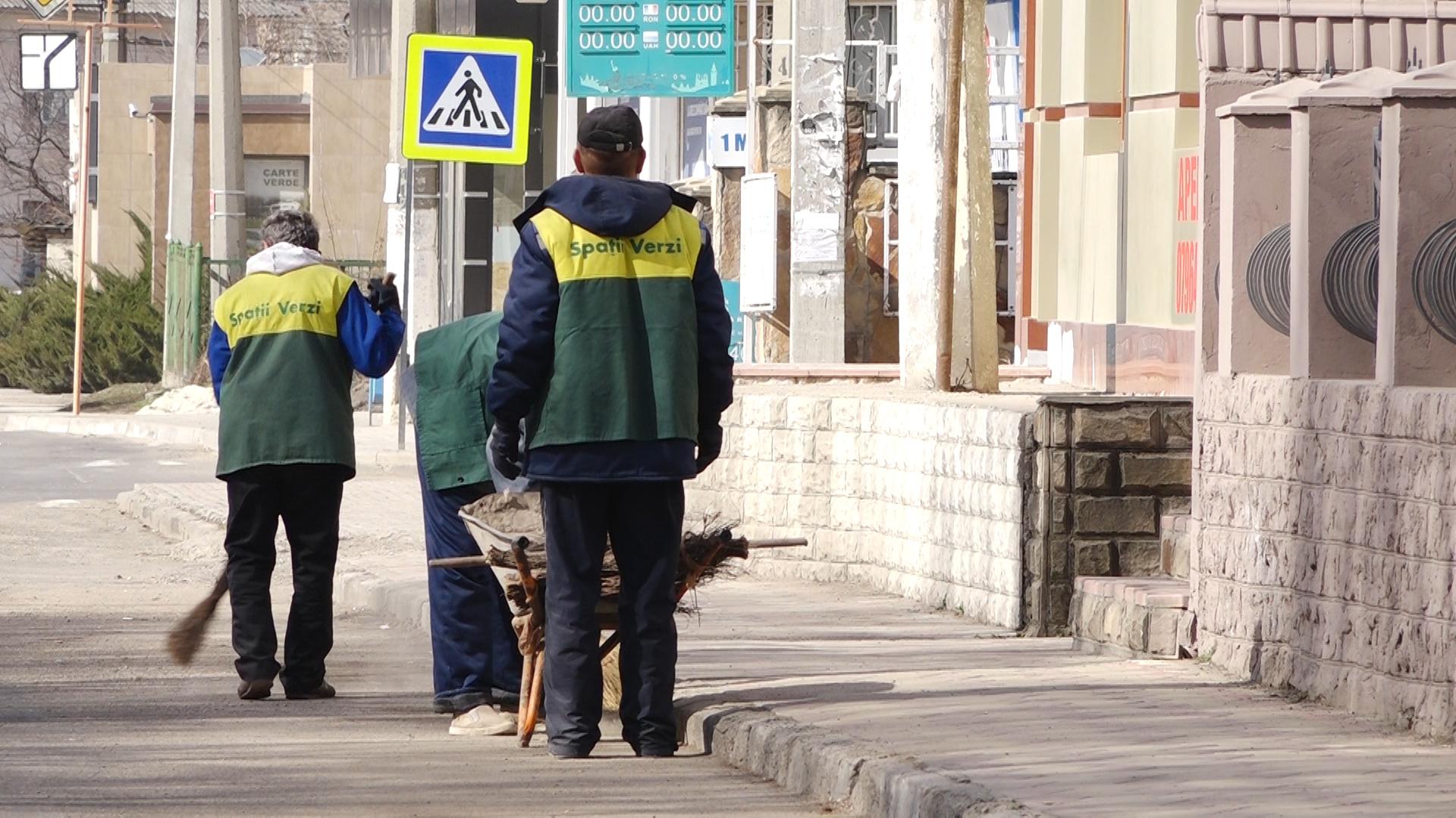 ВИДЕО | Бельцкие дворники справляют свою нужду под кустиками. Директор МП БиО смеется в ответ