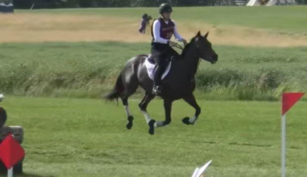 Accident cu final tragic produs la un concurs de sărituri peste obstacole: o călăreață și calul ei au murit