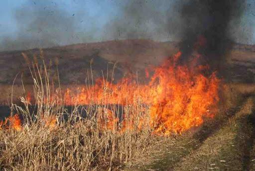 Peste o sută de hectare de vegetație uscată, mistuite de flăcări