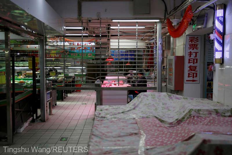 Shenzen devine primul oraș din China care interzice consumul de câini și de pisici