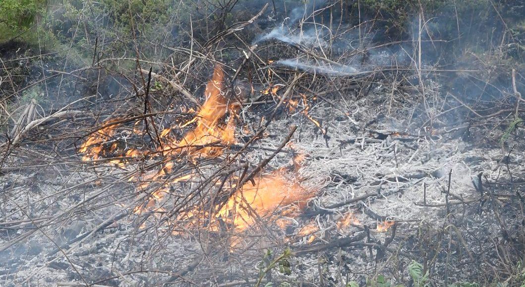 VIDEO | Drumarii din Florești dau foc la vegetație la indicația șefilor