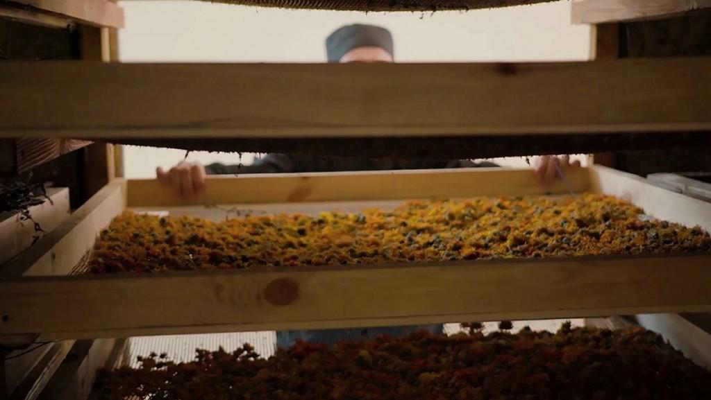 Unicul ceai certificat ecologic din Moldova va ajunge în Germania