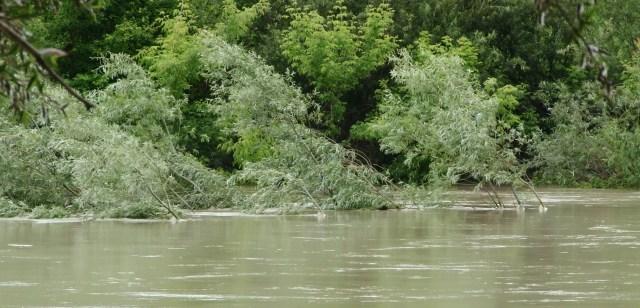 VIDEO | Pe lângă COVID, unele localități din nordul țării ar putea fi lovite și de inundații